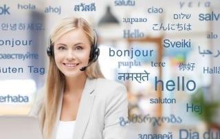 Professional Translation Company vs. Online Translator